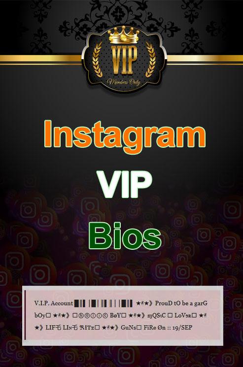 Instagram Vip bio