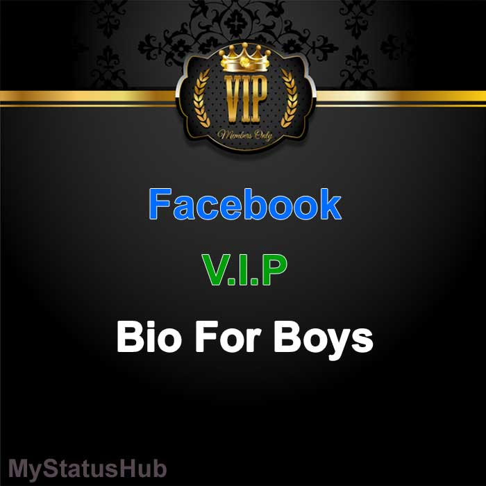 facebook vip bio for boys